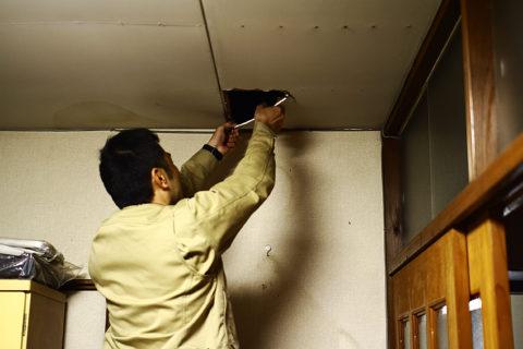 photo: ちょっと天井裏を